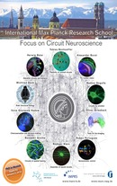 Neuroscience_PhD_interactive